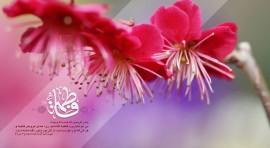 برگزاری جشن میلاد حضرت زهرا(س) در مرکز امام علی(ع)